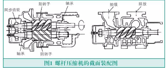 螺杆机的结构与分类